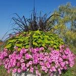 Помощник садовника Польша