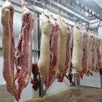 Современному мясокомбинату в Польше требуются